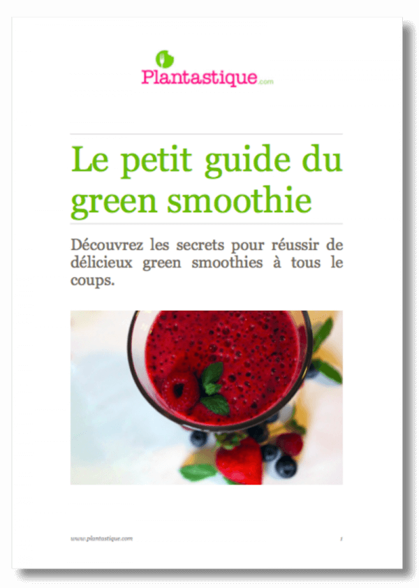 Image du petit guide du green smoothie