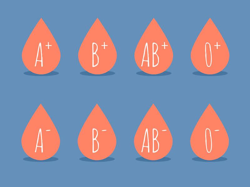 L'alimentation végétale est-elle adaptée à tous les groupes sanguins?