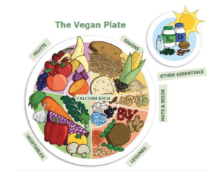 composer une assiette végane saine, plantastique.com